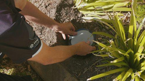 Live Termites Found in Exterra Baiting System