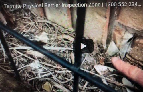 Termite Physical Barrier Inspection Zone