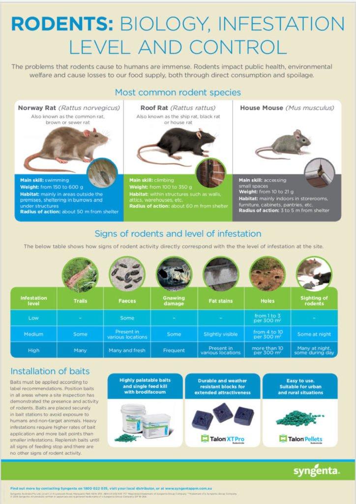 Rodent Species