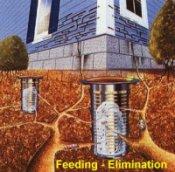 Exterra Termite Elimination