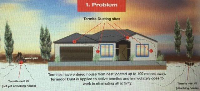 Termidor dust 1