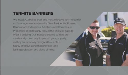 Termite Protection Gold Coast | Brisbane