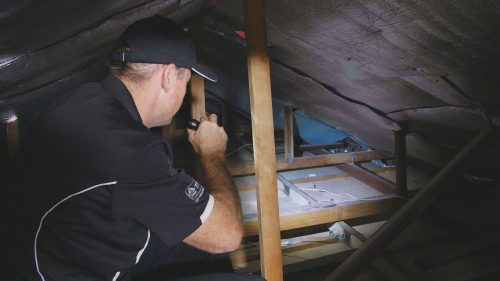 Termite Inspection Gold Coast