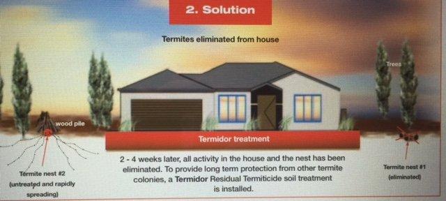 termidor dust 2