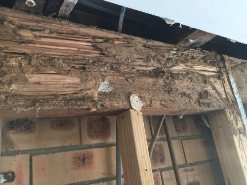 """Termite Damage that will bring tears to your eyes"" Thanks for using our services, ""2018"" here we go …"
